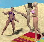 Beach conflict 7 by cattle6