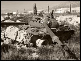 Tank by TheHer3tic