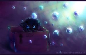 Kitten in the box... by Iris-icecry
