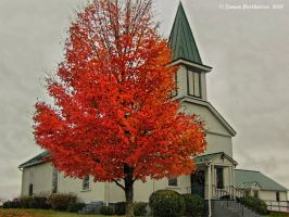 Tree And Church In Amissville by jim88bro