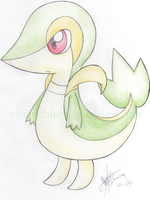 Snivy - Traditional by vivianchhay