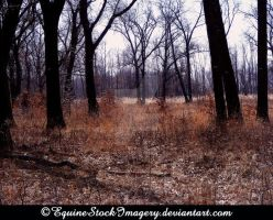 Landscape-stock 17 by EquineStockImagery