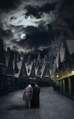 Harry Potter and the half-blood prince by Silja1993