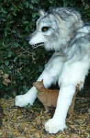pale quadwolf and cat by LilleahWest