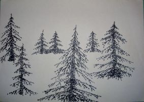 Spruces by fera4462