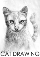 Cat Drawing by NKspace