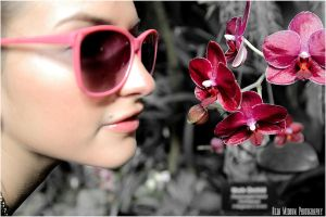 Pink Orchid by tarnishedhalo