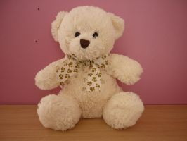 Teddy - Toy Stock 1 by shelldevil