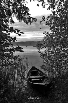 Rowboat bw by Andre-Cosmo