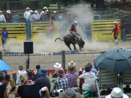Rodeo104 by Jean3071