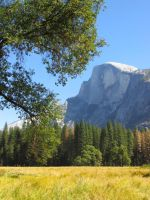 Half Dome by randomkiwibirds