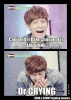 Laughing or crying? by chanyeolcreep
