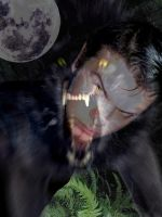 Lycanthrope by superbill22