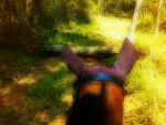 Trail Ride by FinalThreshold