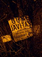 Street signs by bandesz99