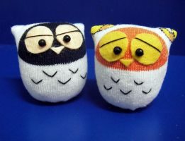 Two little owls by httpecho