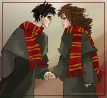 Harry and Hermione II by periwinkle-blue