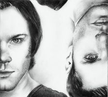 Sam and Dean Winchester by Vioolett-V