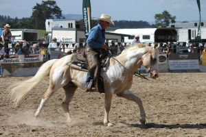 Taupo Rodeo 29 by Sooty-Bunnie