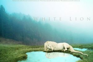 White Lion by Nawaii