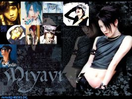 Miyavi Wallpaper by Yudoku