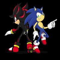 Sonic and Shadow by QT-Star