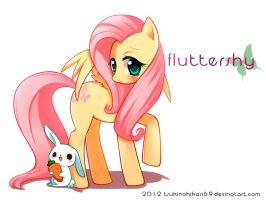 Fluttershy Commission by H--neko