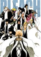 Bleach 494 Cover by enragedb00