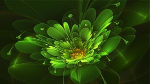 April Green Flower by Frankief