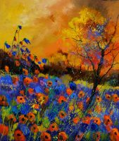 Poppies 675140 by pledent