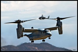 MAGTF Osprey 2 by AirshowDave