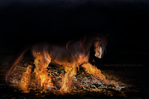 WITH THE FIRE IN MY HEART by Ehrendi