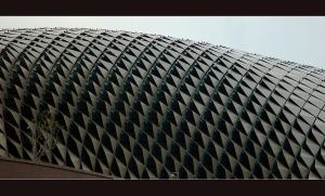 Durian shell by MarcWasHere