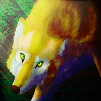 Light in the Forest by windwolf55x5