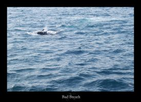 Bad Breath by rcoots