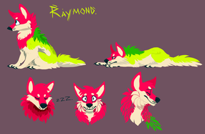Raymond by xDorchester