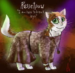 Russetpaw in the Pageant by Alopiidae