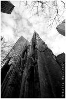 St. Patrick's Cathedral by kaleynelson