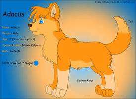 Adacus Ref sheet v.1 by squishy-paws