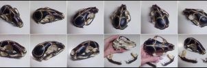 -FireFly Snatcher- Painted Raccoon Skull -SOLD- by TaxiderMegsan