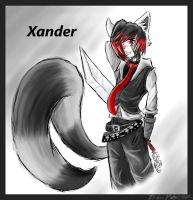 Xander by ChaserTech