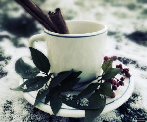 Cup of Winter by *aninyosaloh