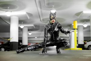 Catwoman Prowl by PorcupineJ