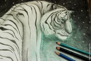 What do you see Richard Parker? by kirigi-risu