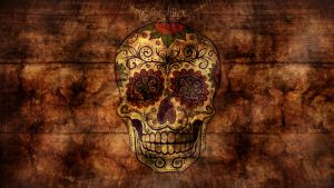 Skull Wallpaper by graphiicx