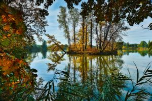 Polish golden autumn by Witoldhippie