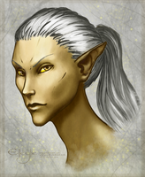 gold and silver by Elleylie