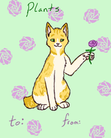 Lonetail Valentines Day Card by Snowshka