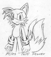 Sketch- Miles Tails Prower by wandablazer