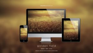 Golden field wallpaper by dragonetty